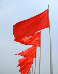 Red Flags - Warning!