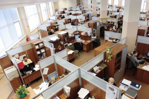 Want to work in a Cube Farm? Really?