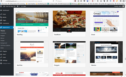 ScreenShot 200 WordPress Themes