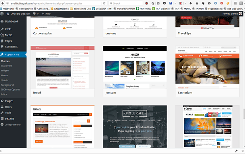 Screenshot WordPress Themes
